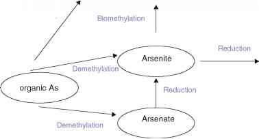 Arsine Arsenic Ions