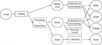 Harvesting Process Four Steps